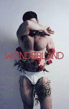Wonderland (BoyxBoy) by indie_wanderer