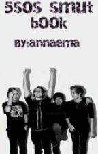 5sos smut book by annaema