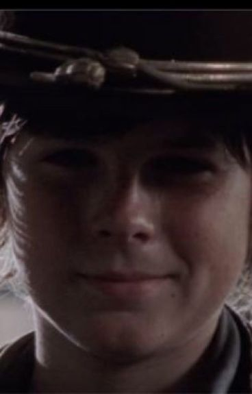 Survival With You~ A Carl Grimes x Reader Fanficton