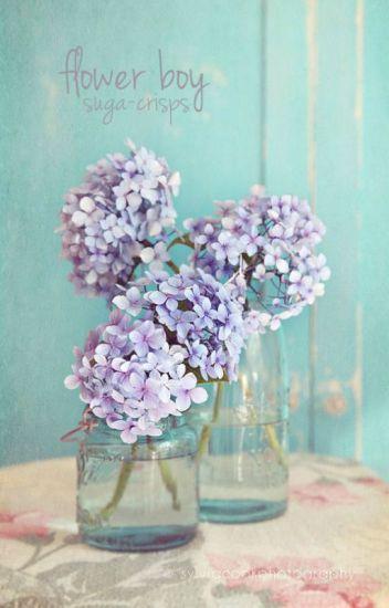flower boy ❀ min yoongi #Wattys2016