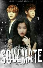Destined Soulmate ( EXO Chanyeol fanfic ) by chanmal12