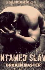 UnTamed Slave: Broken Master by XMiekieMieksX