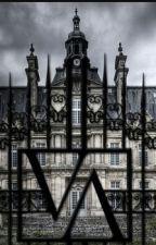 vampire academy by superaamna