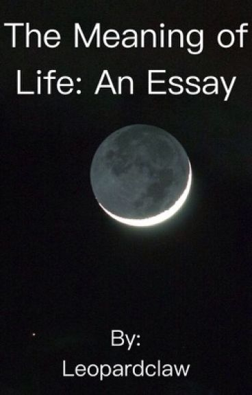 meaning of life 3 essay
