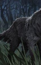The werewolf by HermioneGranger2828