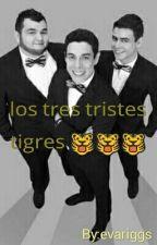 los tres tristes tigres  by eva_castillo