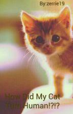 How Did My Cat Turn Human!?!? by ThatcherZalfie19