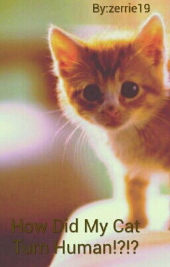 How Did My Cat Turn Human!?!?