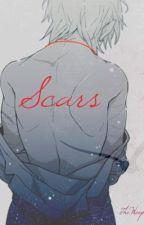 Scars by MeiJelly
