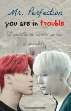 Mr. Perfection, you are in trouble{yoonmin} by vkookgaminshiper