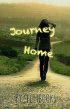 Journey Home by splitbooks