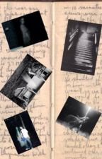 Journal du Paranormal by Amel57