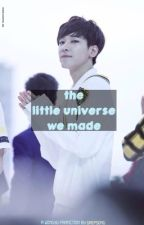 The Little Universe We Made \\ Seventeen WonGyu fanfic by gaepsong