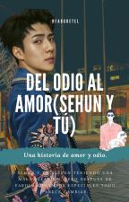 DEL ODIO AL AMOR ( SEHUN Y TU ) by fabianagretel