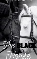 The Black horse by NIENenSOFIE