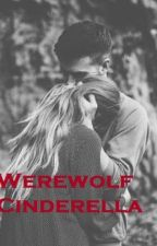 Werewolf Cinderella (ON HOLD - WRITERS BLOCK) by heartere