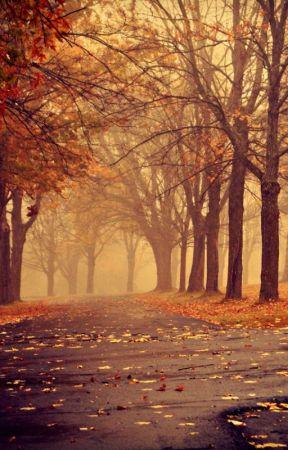 Autumn by FlaminPhoenix