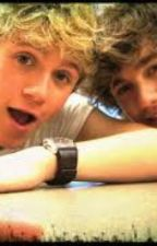 Take A Chance •A Niall Horan/Liam Payne FanFiction• by rebeccahoran72