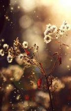Học 3000 từ Tiếng Anh bằng thơ by minhhtienn0104
