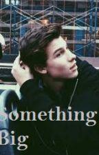 Something Big- Shawn Mendes by theamazingfeel