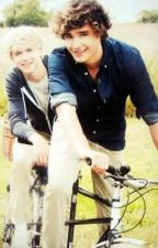 Niam fanfiction by millyboland1D