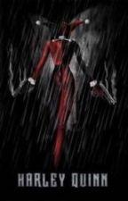 Harley Quinn  by akopik