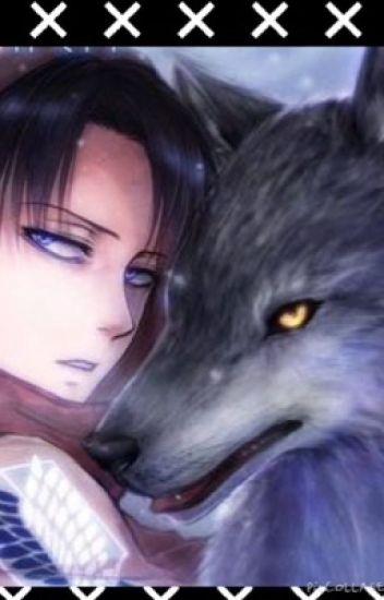 Werewolf Levi x Reader