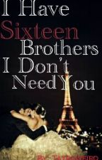 I Have Sixteen Brothers, I Don't Need You by tatroweird