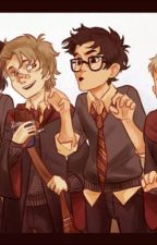 The beginning of the Marauders *Editing* by girlMarauder4life