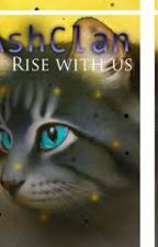 Warriors: A New Story: A Shadowed Past (Book 1) by WarriorsNerd_AshClan