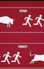 Türkler İle Yabancılar Arasındaki Farklar by BridgitMendler327
