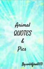 aminal quotes and pics by wildfire0113