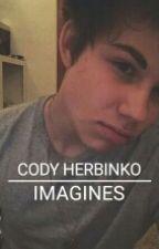 Cody Herbinko Imagines by netflixherbinko