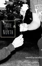 True North | Larry Stylinson One Shot | TRADUCCIÓN by wewontsurrender
