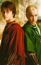Draco X Reader X Harry by MarissaC1998