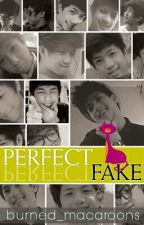 Perfect Fake 2 by burned_macaroons
