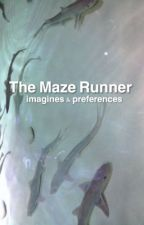 The Maze Runner ~ Imagines & Prefrences by teenagehurricane