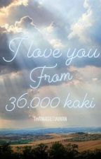 I Love You From 36.000 kaki by ThaniaSetiawan