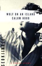 Wolf on an Island : Calum Hood by SEOKJINBEE