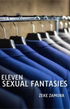 Eleven Sexual Fantasies by sheirasutan