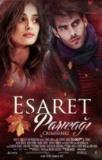 Esaret Parmağı(RAFLARDA!) by crimson41