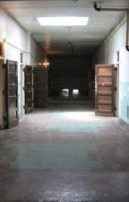 Cowerwood Insane Asylum Female Ward by x-LovesLovers-x