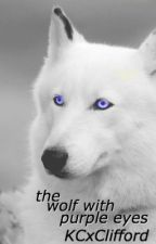 the wolf with purple eyes [stiles stilinski] by KCxClifford
