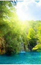 yaz günlüğü by TalhaTunez