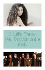 2 Little Things: One Direction and a Model ( A One Direction fan fic) by prettygirlmar21