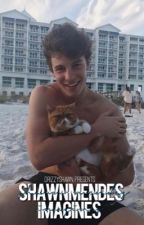 Shawn Mendes Imagines by SimplicityMendes