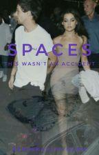 Spaces | L.T by rebekkahsmyname