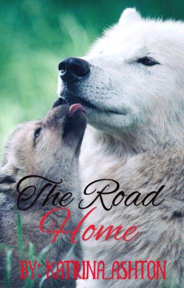 The Road Home [ManxMan/MPREG]