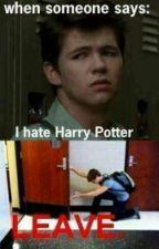 Harry Potter HeadCannons by Slytherin_Rocks