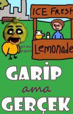 Garip ama Gerçek - Five Nights at Freddy's by baserx